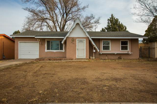 10705 Irene Avenue NE, Albuquerque, NM 87112 (MLS #963022) :: The Buchman Group