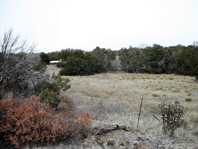 28B Monica Road, Edgewood, NM 87015 (MLS #963045) :: Campbell & Campbell Real Estate Services