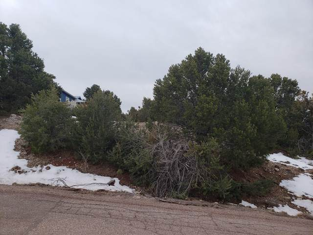 Pinion Heights Rd, Sandia Park, NM 87047 (MLS #963055) :: Berkshire Hathaway HomeServices Santa Fe Real Estate