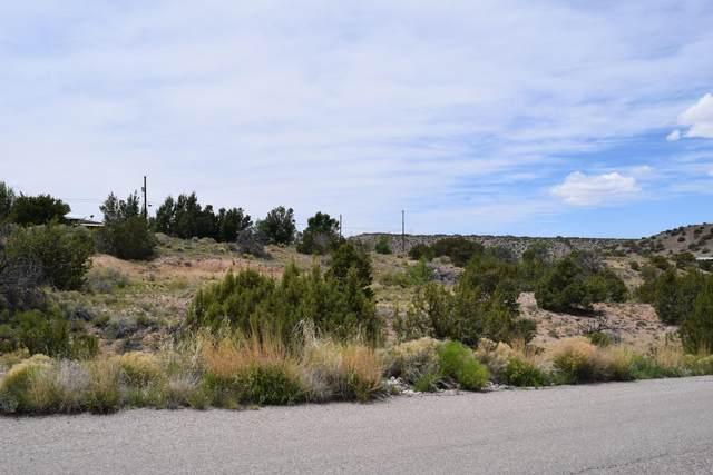 11 La Entrada, Placitas, NM 87043 (MLS #963088) :: Sandi Pressley Team