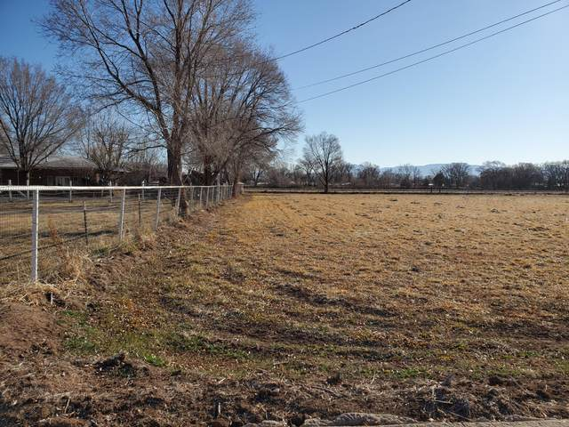Country Lane, Bosque Farms, NM 87068 (MLS #963132) :: Silesha & Company