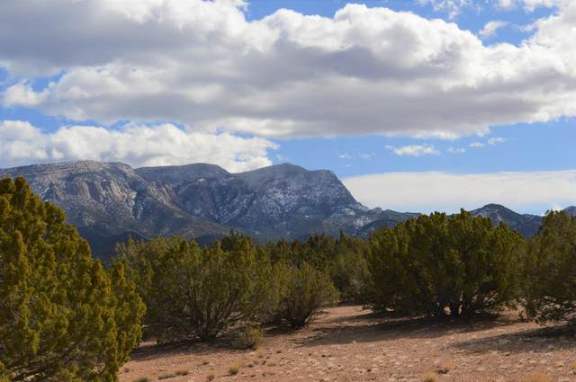 74 Anasazi Trails Road, Placitas, NM 87043 (MLS #963135) :: Campbell & Campbell Real Estate Services