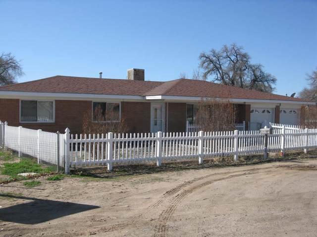 4 Gurule Road, Peralta, NM 87042 (MLS #963141) :: Sandi Pressley Team