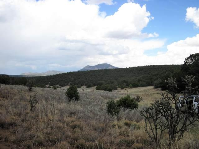 Vallecitos (Unimproved) Road, Tijeras, NM 87059 (MLS #963190) :: The Buchman Group