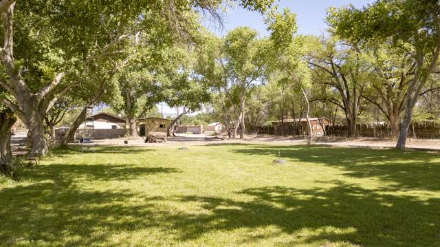 4259 Corrales Road, Corrales, NM 87048 (MLS #963273) :: Campbell & Campbell Real Estate Services