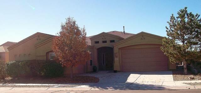 441 Primrose Avenue SW, Los Lunas, NM 87031 (MLS #963284) :: The Buchman Group