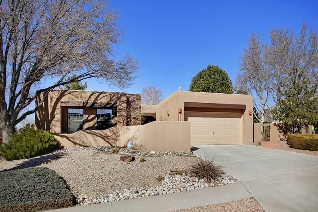 9215 Hagerman Avenue NE, Albuquerque, NM 87109 (MLS #963320) :: The Bigelow Team / Red Fox Realty