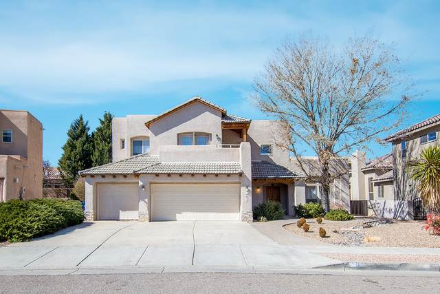 9615 Noche Vista Drive NW, Albuquerque, NM 87114 (MLS #963370) :: The Bigelow Team / Red Fox Realty
