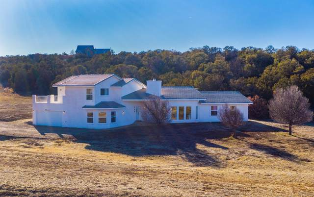 63 Camino Cerritos, Edgewood, NM 87015 (MLS #963391) :: Campbell & Campbell Real Estate Services