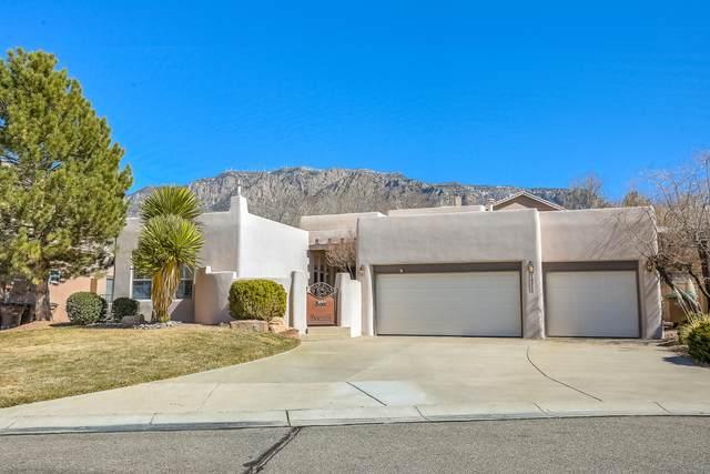 12215 Mirandy Court NE, Albuquerque, NM 87122 (MLS #963407) :: The Bigelow Team / Red Fox Realty