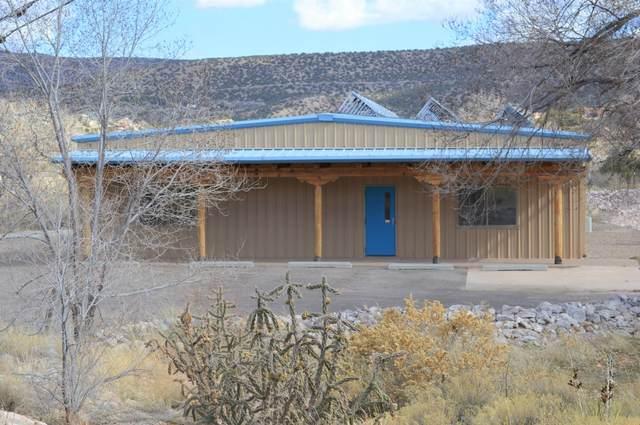 6 Camino De Los Desmontes, Placitas, NM 87043 (MLS #963413) :: Campbell & Campbell Real Estate Services
