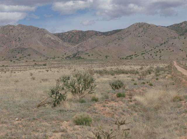 Destello Drive, Belen, NM 87002 (MLS #963429) :: Campbell & Campbell Real Estate Services