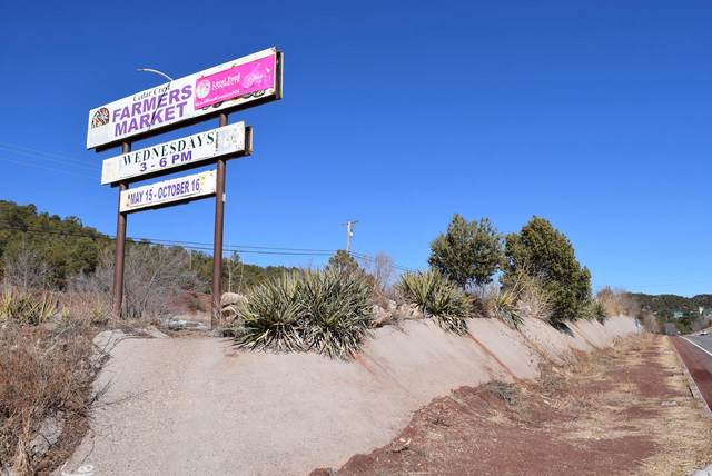 N Highway 14, Cedar Crest, NM 87008 (MLS #963464) :: Campbell & Campbell Real Estate Services