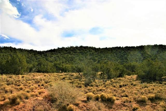 3049 Jumano Trail Lot 33, Mountainair, NM 87036 (MLS #963505) :: The Buchman Group