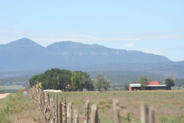 Lot 1B 2A Howell Road, McIntosh, NM 87032 (MLS #963656) :: The Buchman Group