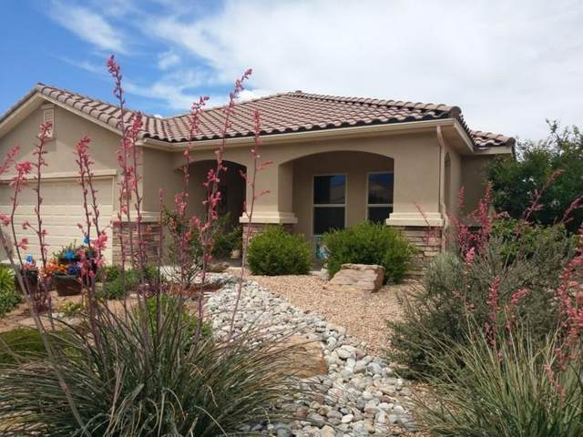 905 Prairie Zinnia Drive, Bernalillo, NM 87004 (MLS #963863) :: Campbell & Campbell Real Estate Services