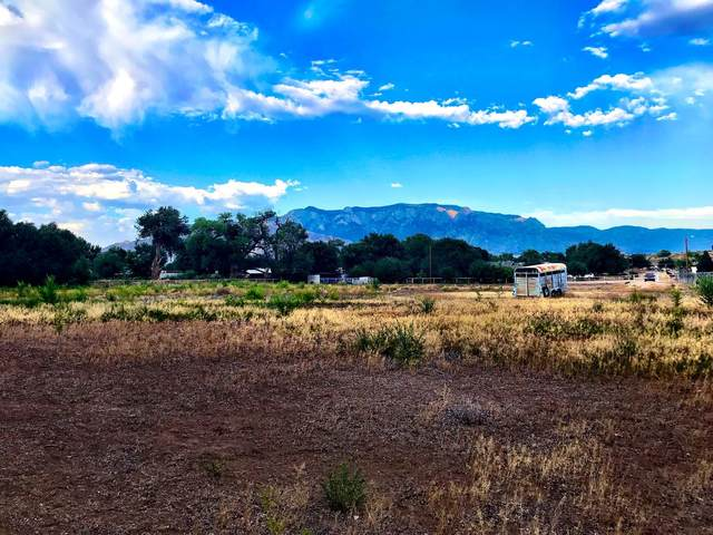 109 Flowers Road, Albuquerque, NM 87113 (MLS #964017) :: Campbell & Campbell Real Estate Services
