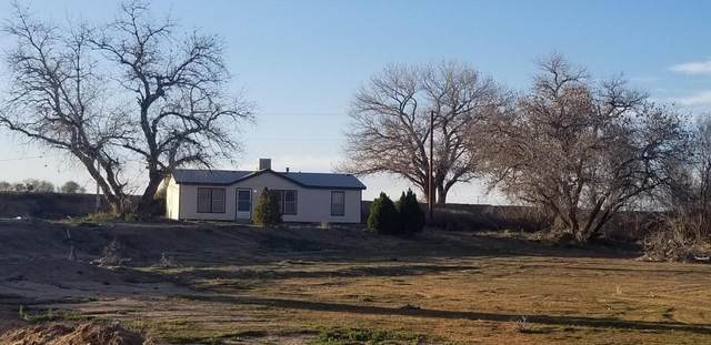 50 Sunset Road, Belen, NM 87002 (MLS #964044) :: Sandi Pressley Team