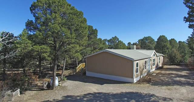 88 Mccomb Road, Edgewood, NM 87015 (MLS #964060) :: Campbell & Campbell Real Estate Services