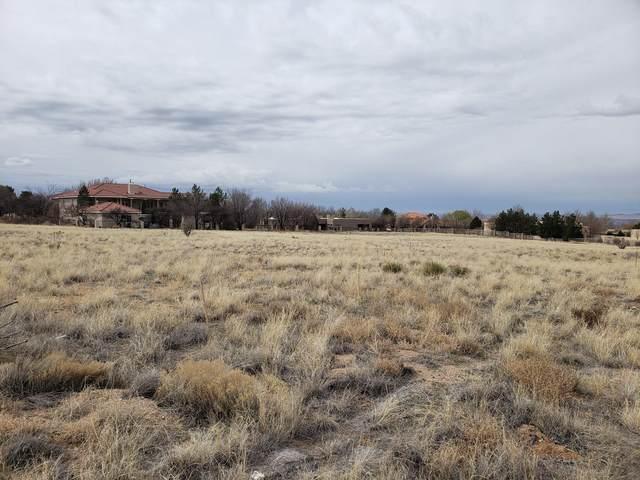 10205 Palomas Avenue NE, Albuquerque, NM 87122 (MLS #964083) :: The Buchman Group