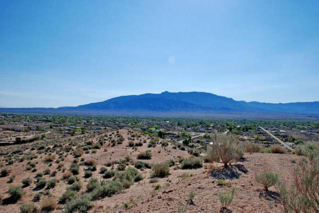 1477 Sagebrush Drive, Corrales, NM 87048 (MLS #964093) :: Campbell & Campbell Real Estate Services