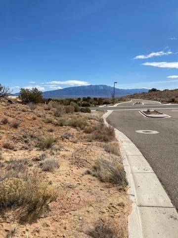 2312 Desert Marigold Road, Rio Rancho, NM 87144 (MLS #964253) :: The Buchman Group
