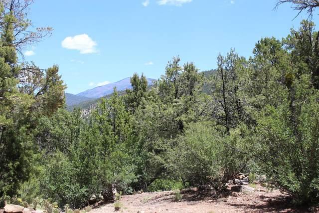 Oso Road, Jemez Springs, NM 87025 (MLS #964262) :: Berkshire Hathaway HomeServices Santa Fe Real Estate