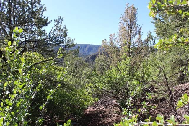 Cebolla Loop, Jemez Springs, NM 87025 (MLS #964264) :: The Buchman Group