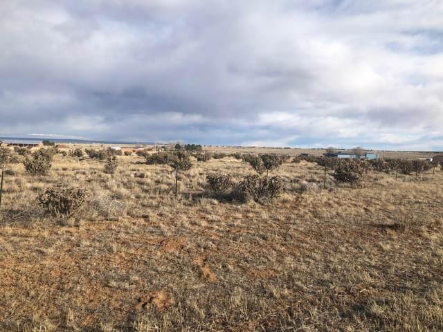 76 El Cielo Azul Circle, Edgewood, NM 87015 (MLS #964312) :: The Bigelow Team / Red Fox Realty
