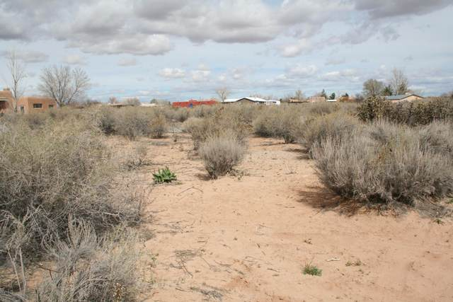 0 Lonesome Dove, Corrales, NM 87048 (MLS #964376) :: Campbell & Campbell Real Estate Services