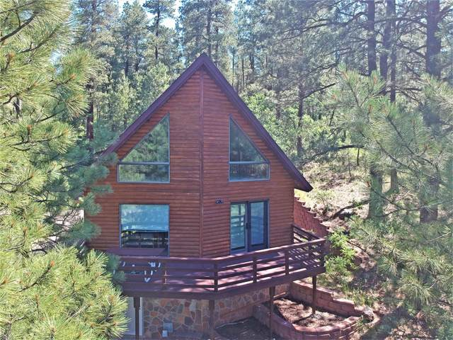 1198 Freelove Drive, Jemez Springs, NM 87025 (MLS #964767) :: Campbell & Campbell Real Estate Services
