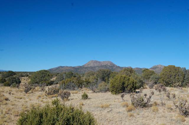 175 Cow Mill Road, Edgewood, NM 87015 (MLS #964833) :: Campbell & Campbell Real Estate Services
