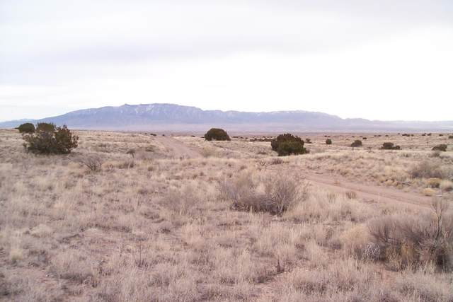 4110 22nd Ave ((U3b70l5) Avenue SW, Rio Rancho, NM 87124 (MLS #964872) :: Campbell & Campbell Real Estate Services