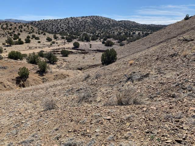 59 Forest Road 123, Magdalena, NM 87825 (MLS #964916) :: The Buchman Group