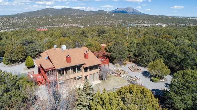 12 Oakmont Ridge Road, Sandia Park, NM 87047 (MLS #965114) :: The Buchman Group