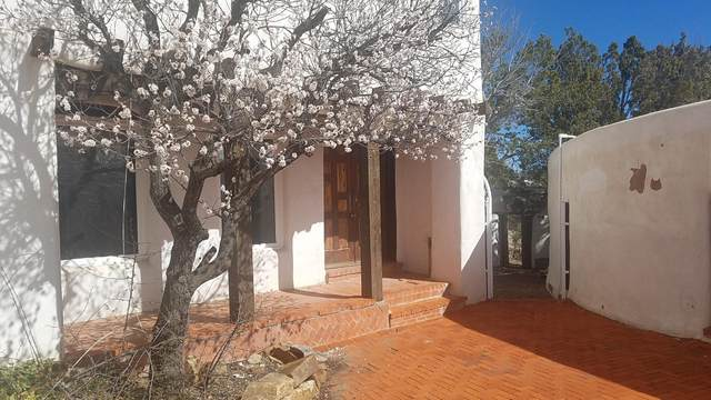 9 Alamo Hueco Drive, Cedar Crest, NM 87008 (MLS #965127) :: Campbell & Campbell Real Estate Services