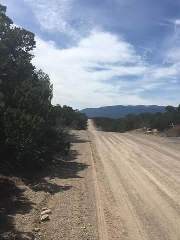 34 Canoncito Vista Road, Tijeras, NM 87059 (MLS #965143) :: The Buchman Group