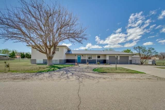 1155 Manzanito Drive, Bosque Farms, NM 87068 (MLS #965174) :: The Buchman Group