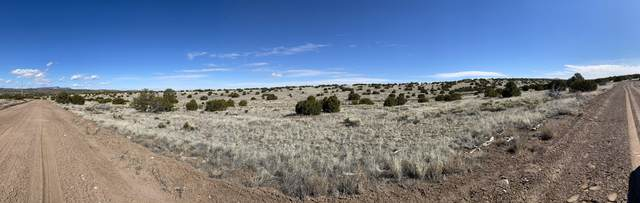 Lot 43 Pinon Springs, Magdalena, NM 87825 (MLS #965253) :: Berkshire Hathaway HomeServices Santa Fe Real Estate