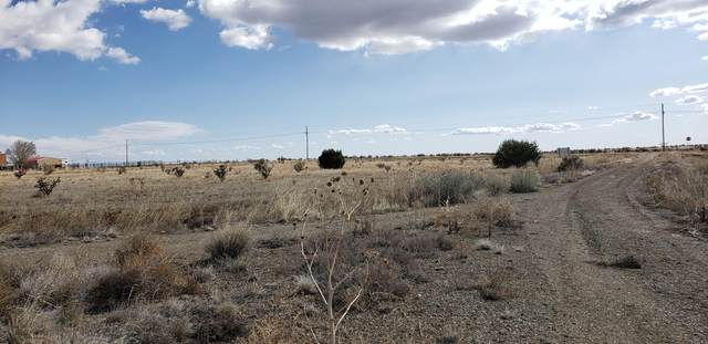 4 Raven Court, Edgewood, NM 87015 (MLS #965291) :: Campbell & Campbell Real Estate Services
