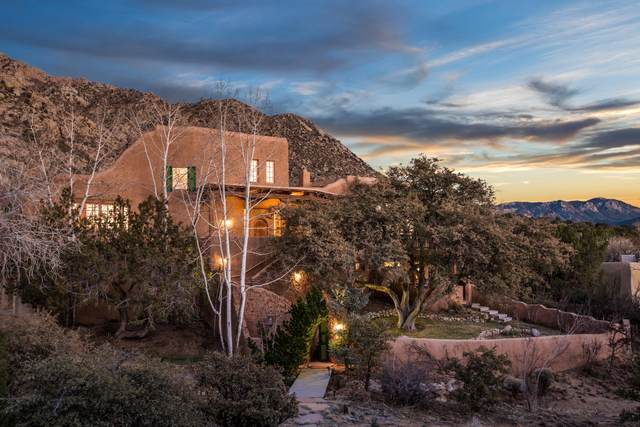 301 Spring Creek Place NE, Albuquerque, NM 87122 (MLS #965314) :: The Buchman Group