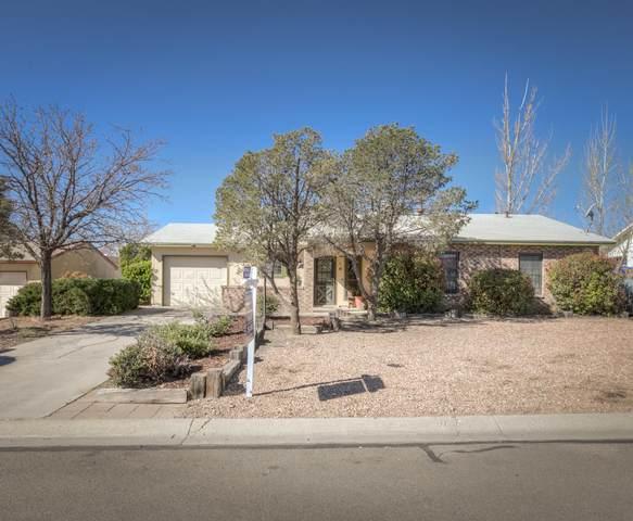 811 Buckboard Road SE, Rio Rancho, NM 87124 (MLS #965386) :: Berkshire Hathaway HomeServices Santa Fe Real Estate