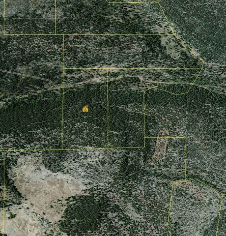 Bartolo Rd., Manzano, NM 87016 (MLS #965470) :: Berkshire Hathaway HomeServices Santa Fe Real Estate