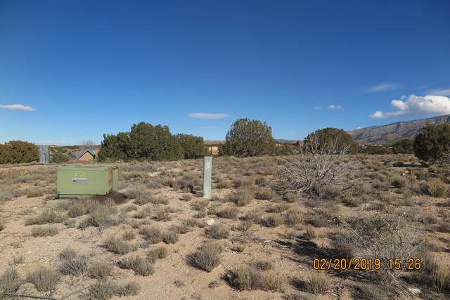 Freeform Way, Placitas, NM 87043 (MLS #965513) :: The Buchman Group