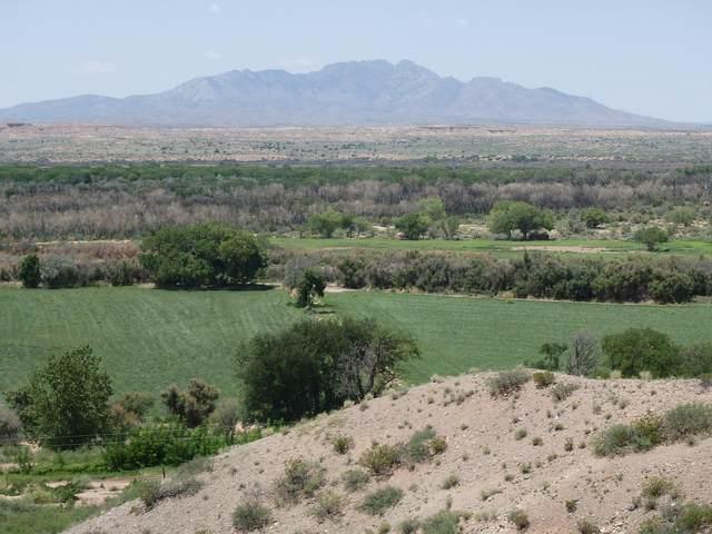 La Joya Farm, La Joya, NM 87028 (MLS #965516) :: Keller Williams Realty
