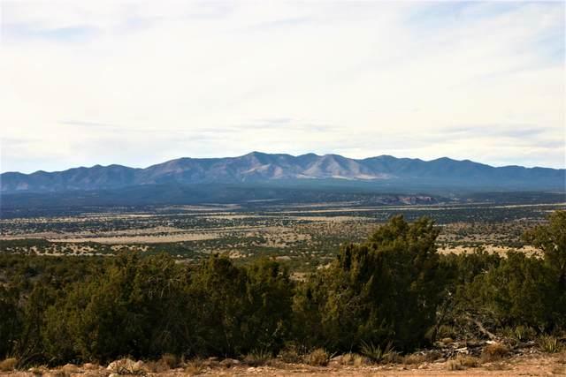 3 San Mateo Trail Lot 46 Trail, Mountainair, NM 87036 (MLS #965521) :: The Buchman Group