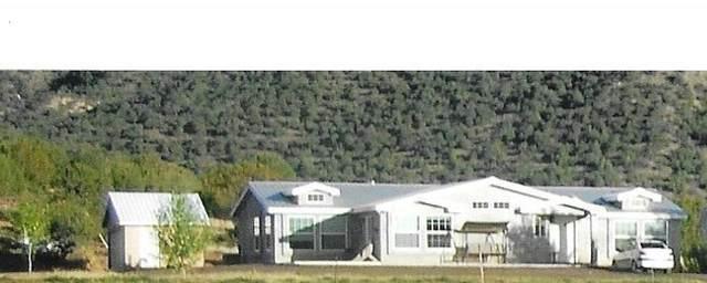 101 Jaramillo Lane, Ponderosa, NM 87044 (MLS #965545) :: Campbell & Campbell Real Estate Services