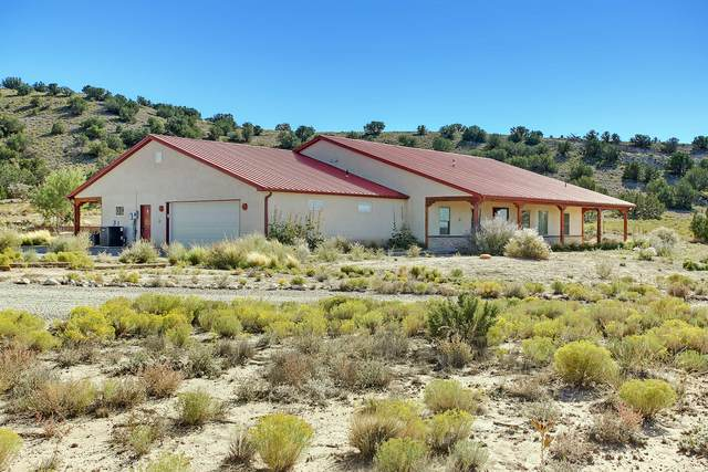 4 Anasazi Road, Placitas, NM 87043 (MLS #965555) :: Campbell & Campbell Real Estate Services