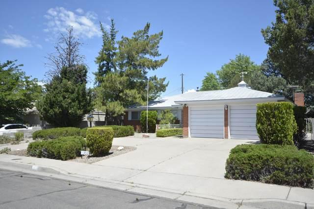 11705 Golden Gate Avenue NE, Albuquerque, NM 87111 (MLS #965571) :: Sandi Pressley Team