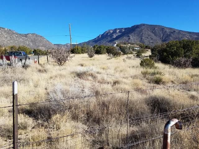 4 Monticello Drive NE, Albuquerque, NM 87123 (MLS #965606) :: The Buchman Group